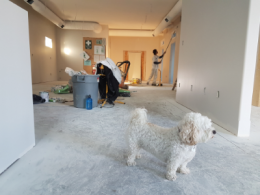 man painting walls during home renovation project